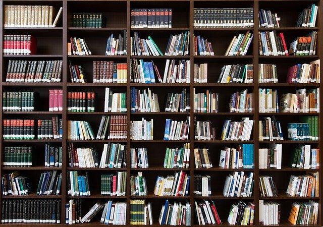 מהי סקירת ספרות?